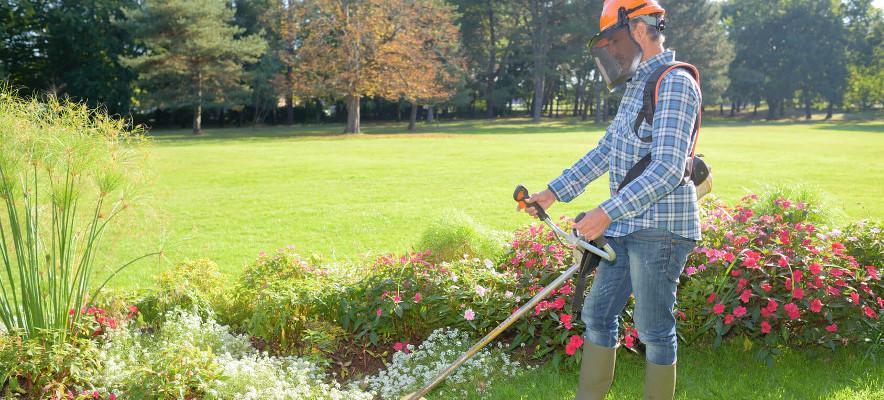 Gärtner Oder Landschaftsgärtner Wmd Für Ein Kommunalunternehmen
